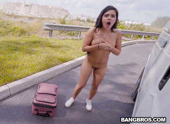 Porn Star Bang Bus - vacationing-on-the-bus-bangbros-12 - Porno-Wonder.com